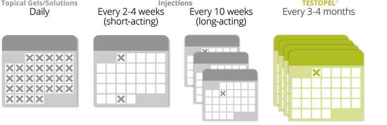 Testopel-Schedule